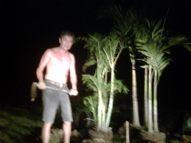 Captain Watana planting trees for his house under cover of darkness